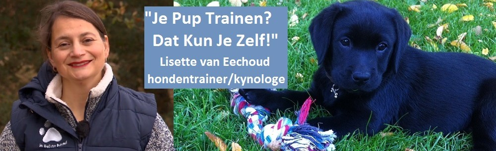 """Puppycursus """"Je Pup Trainen? Dat Kun Je Zelf!"""""""
